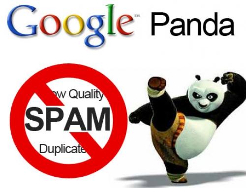 Всичко за Google Panda ъпдейт